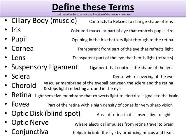 igcse biology glossary