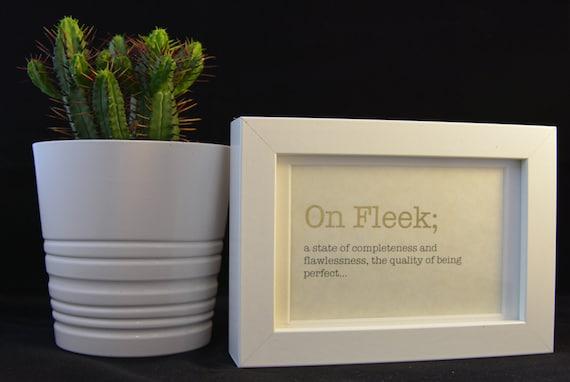 fleek meaning urban dictionary