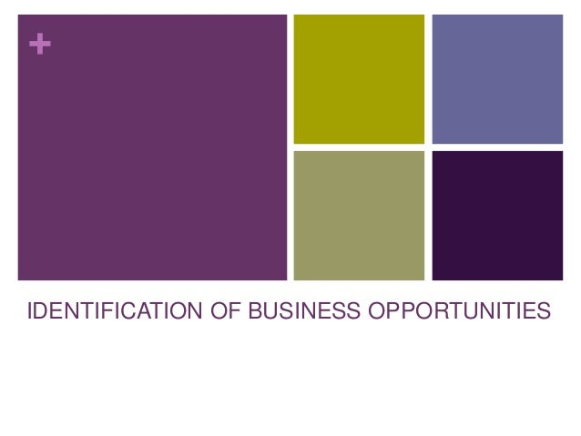 identification of business opportunities pdf