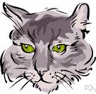 felidae dictionary